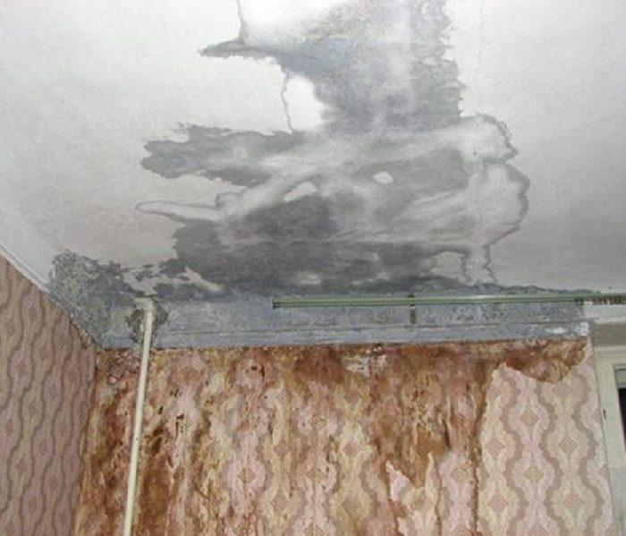 гром затопили соседи как оценить ущерб Мои сограждане