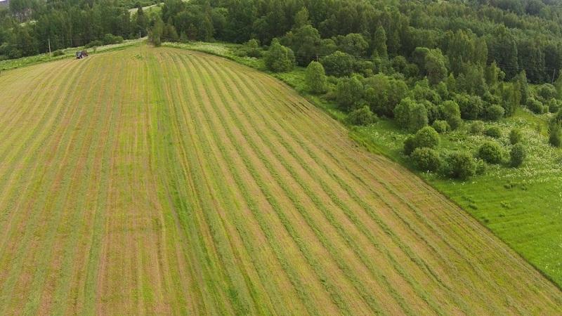 категория земель сельскохозяйственного назначения