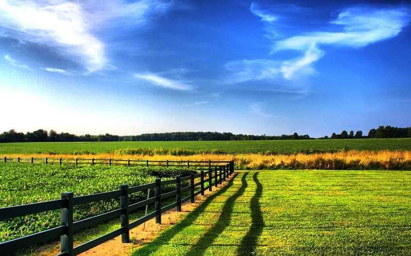 Что можно строить на землях сельскохозяйственного назначения