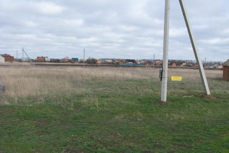 Как узнать стоимость земельного участка