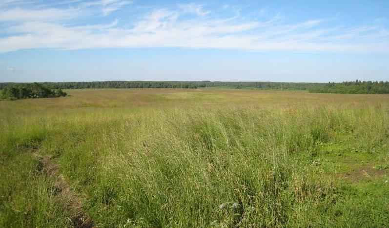 предварительный договор на покупку или продажу земли