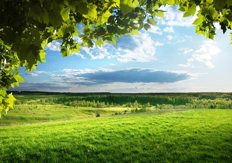 право на пожизненное владение землей