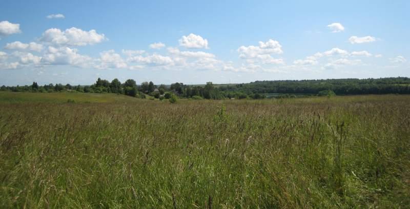 Правила аренды земли сельскохозяйственного назначения
