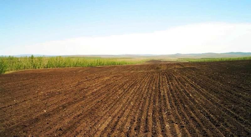 как правильно оформлять аренду земли сельскохозяйственного назначения