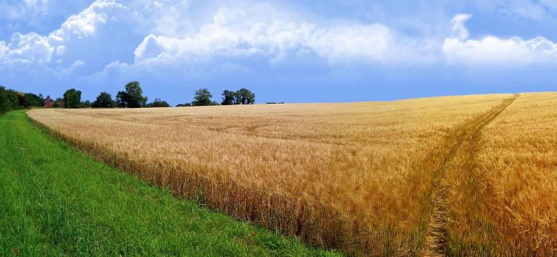 как арендатор может оспорить кадастровую стоимость земли