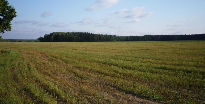 как можно снизить кадастровую стоимость земли