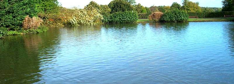 Что такое земли водного фонда