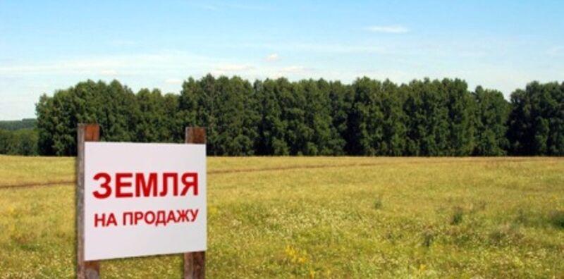 покупка земли сельхозназначения