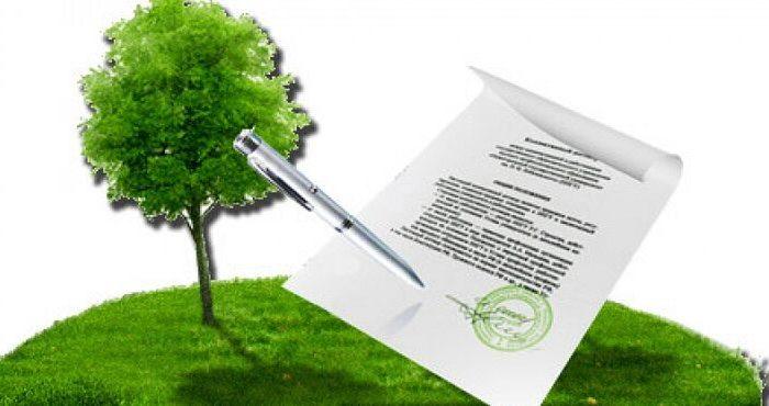 реализация преимущественного права покупки земельного участка