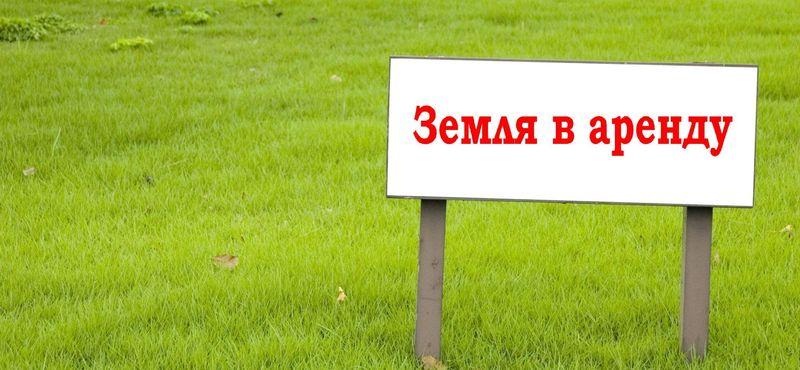 правила проведения аукциона по аренде земельных участков