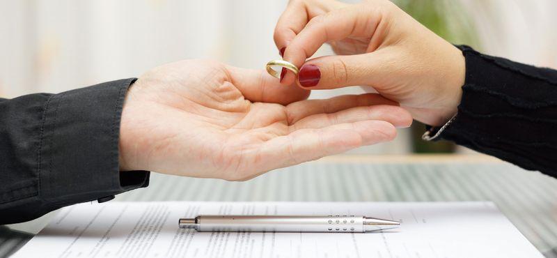 совместно нажитое имущество супругов при разводе