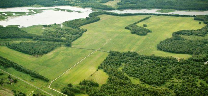 как получить гектар земли бесплатно